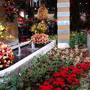 If snow got you down, head for the Philadelphia Flower Show