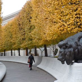 Fall Season at the National Law Enforcement Memorial